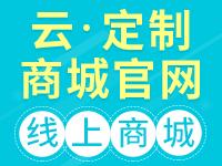 云·定制商城网站【荣获阿里云云合应用奖、建站市场最佳选择奖】