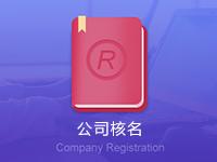 公司注册核名