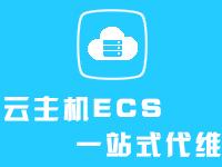 乘云-个人/企业级一站式代维服务