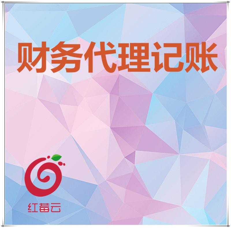 广州红莓云 · 财务代理记账【专业记账,代理记账】