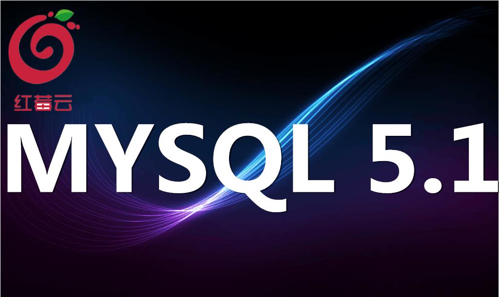广州红莓云.安全高效管理系统( mysql5.1)