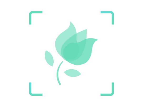 形色植物识别API-花草树木鉴定