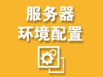 ECS云服务器环境配置服务