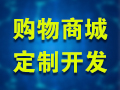 电商平台开发/商城网站建设/B2C商城/商城系统/分销商城