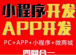 APP开发、手机网站、微商城、小程序都可以定制