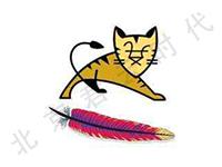 Java运行环境 <em>Tomcat</em> MySQL Windows 2008 R2 64位