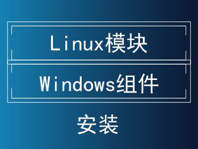 Linux模块|Windows组件安装