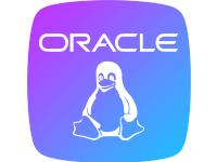 Oracle11g镜像(11.2.0.4 Centos 6 64位 Java运行环境)
