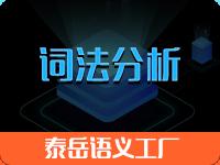 泰岳语义工厂_词法分析_分词|中文分词、命名实体|实体识别、地址识别、时间抽取、机构识别、姓名识别、词性标注