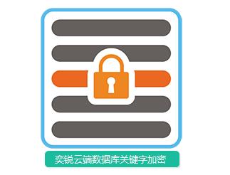 奕锐云端数据加密服务(数据库关键字加密)