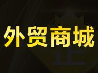 【免费试用】外贸B2C网站自建站 英文网站源码仿站 国外购物网站建设