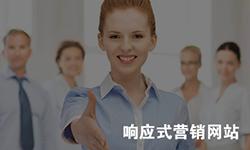 【企业营销网站平台定制】1对1设计满意为止
