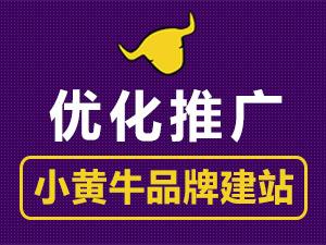 营销网站建设/网站优化/SEO优化推广/关键词优化排名【小黄牛品牌营销推广】