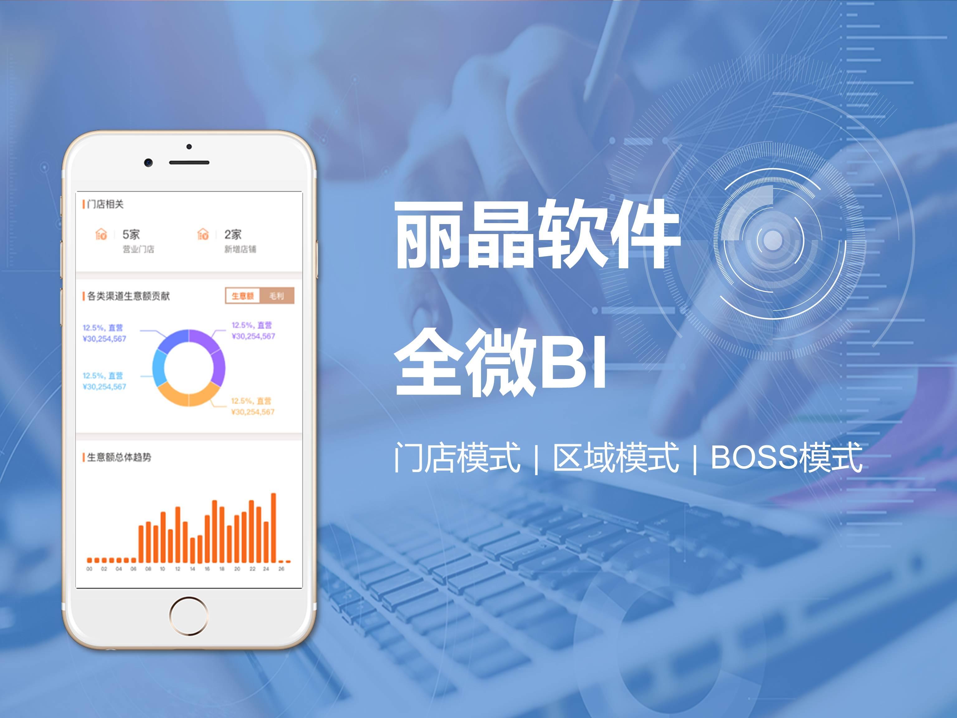 丽晶全微BI 手机报表 移动数据分析 移动报表 BOSS报表 库销情况分析 生意分析 销售报表