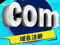 英文域名注册 国际域名购买 网站域名申请 企业域名认证.com .cn