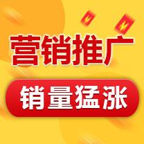 瑞蚁 营销推广 产品优化 产品推广 SEO搜索引擎优化排名 搜索引擎推广【超低价】