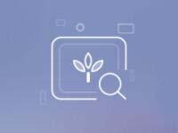 植物识别接口 花卉识别 植物花卉识别 图像识别