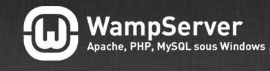 WAMP集成环境web,数据库<em>问题</em>排查(程序<em>问题</em>除外)