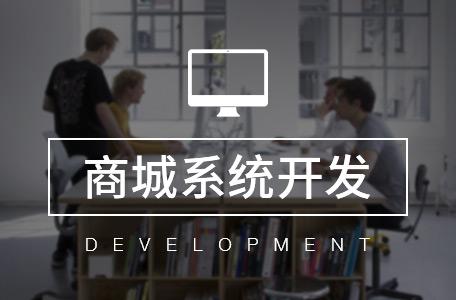 独立部署-电商系统/商城定制开发/APP定制开发/电商平台建设