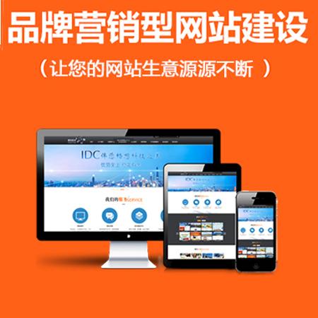 【营销型网站建设】 购物平台网站设计制作 高询盘 高转化