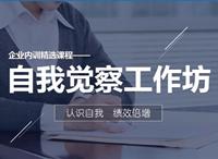 自我觉察工作坊(企业内训精选课程)