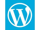 Wordpress 建站系统(Windows2008 | IIS)