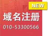 注册域名 域名注册 域名认证 域名解析 域名申请com cn  net 英文域名 中文域名注册 ,咨询010-53300566