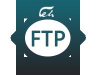 服务器配置FTP信息