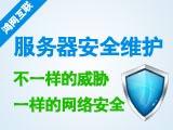 服务器安全代维服务