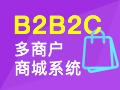 B2B2C商城网站开发,网站定制,全程一对一服务