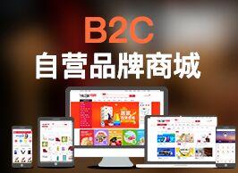 商之翼-B2C商城系统【多渠道、多场景的线上零售商城】
