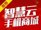 智慧云·手机商城【9元建站专供,购买后可直接联系客服手动开通】